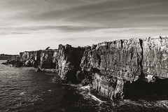 guincho (paulopar.rodrigues) Tags: atlantic atlântico bw cascais lisboa lisbon pb portugal xt1 fuji local mar nature naturenatureza ocean oceano photofoto rochas rocks sea trees