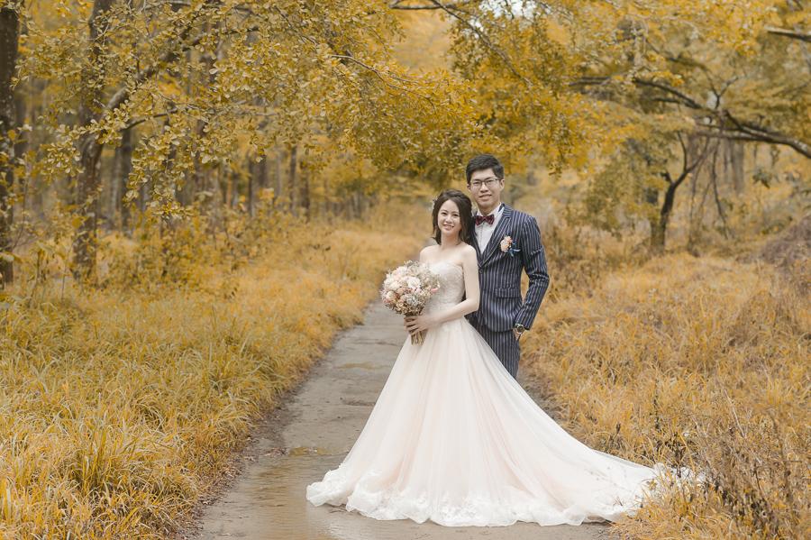 42946439151 f0f6a2452f o [台南自助婚紗] Albert & Vicky/范特囍手工婚紗