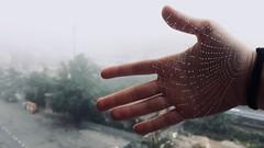 Aracne. (darkosangst) Tags: spider spiderweb mist fog misty morning landscape italy tuscany siena delicate tender dreamlike iphone
