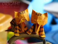 Oh, Brothers... Origami Kittens forever :-) (Oriland) Tags: kitten orilandkitten cat kitty origamikitten publication book oriland origami おりがみ 折り紙 paperdesign origamibykatrinshumakov paperback paper design paperkittensandturtles origamisailing orilandcom paperart noglue yurishumakov toronto ontario canada caturday canon