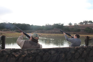 Texas Wingshooting & Driven Hunting 11