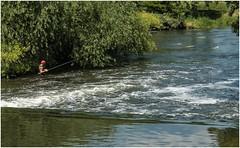 'Mr. Crabtree goes fishing' ........ (Alan Burkwood) Tags: newarkontrent fishing weirpool nottinghamshire rivertrent
