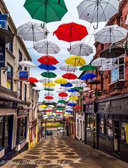 Parasols. (Tony Brierton) Tags: 1718 art cowexford enniscorthy street umberellas colours countywexford ireland