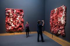 Anish Kapoor Eregallerij Rijksmuseum (David Whelan jr) Tags: anishkapooreregallerij anishkapoor kapoor eregallerij rijkmuseum