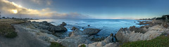2018-06-30 19.41.00.jpg (david-meyer-photo-library) Tags: pacificgrove california unitedstates us