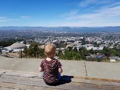 On top of the world (quinn.anya) Tags: paul toddler eastbay berkeleyhills lawrencehallofscience