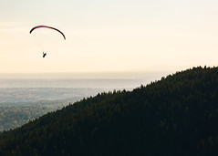 Above It (John Westrock) Tags: issaquah unitedstates us poopoopoint paraglider trees landscape sky nature canoneos5dmarkiii canon135mmf2lusm washingtonstate tigermountain