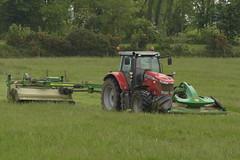 Massey Ferguson 7720 Dyna 6 Tractor with John Deere 630 Trailer Mower Conditioner and John Deere F310R Front Mounted Mower Conditioner (Shane Casey CK25) Tags: massey ferguson 7720 dyna 6 tractor john deere 630 trailer mower conditioner f310r front mounted mf agco jd green leamlara mow mowing cut cutting traktor traktori trekker tracteur trator ciągnik silage silage18 silage2018 grass grass18 grass2018 winter feed fodder county cork ireland irish farm farmer farming agri agriculture contractor field ground soil earth cows cattle work working horse power horsepower hp pull pulling crop lifting machine machinery nikon d7200
