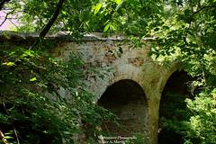 Klevan Castle (mercuryriser2005) Tags: bridge castle nature architecture ukraine klevan ruins europe vacation history landmark trees travel viaduct