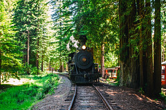 Skunk Train (Thomas Hawk) Tags: america california campmendocino mendocinocounty skunktrain usa unitedstates unitedstatesofamerica locomotive train fav10 fav25 fav50 fav100