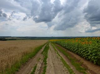 Ukraine, before the storm