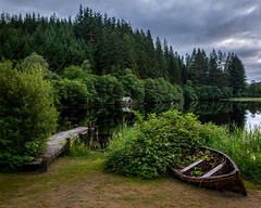 Busy Harbour (Chris-Henry) Tags: aberfoyle trossachs scotland lochard forth river still reflections stirlingshire trees conifers pines queenelizabethforestpark tranquil pier jetty harbour boat vessel abandoned wreck shore lake wilderness nature clouds sky green colour handheldlandscape canon