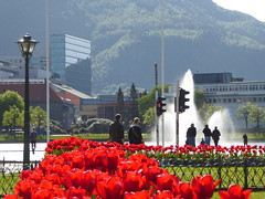 Sunny (m_artijn) Tags: sunny bergen norway flowers tulips pond fountain red glare