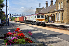 Floral Tribute (whosoever2) Tags: uk united kingdom gb great britain england nikon d7100 train railway railroad july 2018 mexborough yorkshire gbrf class66 66721 harrybeck 4z81 masborough felixstowe flower station sun summer