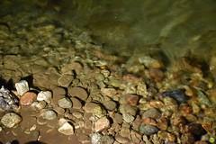 Demänovská Cave of Liberty (petrOlly) Tags: europe europa slowakei slovakia slovensko słowacja sk2018 demänovskácaveofliberty demänovskájaskyňaslobody cave jaskinia nature natura przyroda water