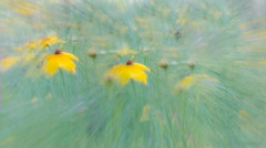 Dream of a Free Spirit (JDS Fine Art Photography) Tags: flowers wildflowers abstract artistic pastel nature surreal surrealism beauty inspirational spiritual freedom freespiril