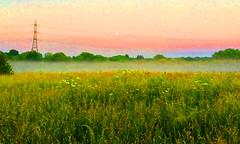 Marsh Lore (spratpics) Tags: marsh marshes uk gb teesside england marshland marshlore