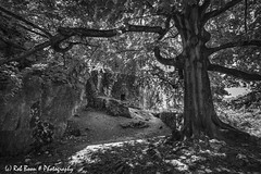 20180708-4629-Chateau_Fort_de_Logne-bw (Rob_Boon) Tags: ardennen belgië chateaufortdelogne domainedepalogne silvefpro2 zwartwit fort belgium robboon blackwhite ardennes vieuxville