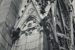Sing Clopin, sing it ! (Anassete) Tags: église cathédrale gargouille paris