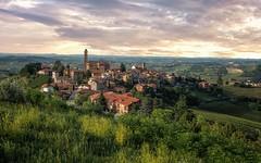 Piemonte landscape (reinaroundtheglobe) Tags: piemonte italy townscape town landscape wineyards daytime idyllic castiglionetinella nopeople green summer