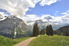 Walking down (St./L) Tags: nikon nature landscape alpine switzerland green trees clouds white mountain hill mountainside snow blue sky path grass ice wide imaginative creative art artistic