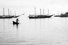 The fisherman and the seagull (Luiz Contreira) Tags: fisherman pescador gaivota ocean mar búzios riodejaneiro brazil brasil brazilianphotographer southamerica américadosul boat boats barco men blackwhite bw