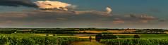 Meussac [17] Pays du Cognac (fra298) Tags: vignoble paysducognac campagne panorama hdr canoneos70d sigma24105mmf4dgoshsmart paysage été cielorageux