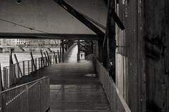 Il court il court (Atreides59) Tags: lyon rhone rhône saone saône urban urbain water eau people pont bridge black white bw blackandwhite noir blanc nb noiretblanc pentax k30 k 30 pentaxart atreides atreides59 cedriclafrance