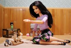 A-Z Challenge P: Pets (saratiz) Tags: pets barbiefashionista barbiemadetomove lagirl cats ball play