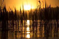 Sun sun (goncalofilipe24) Tags: sun sol playa mar lagoa lago sal monte por do paz paraiso