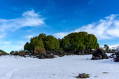 Parque Nacional Conguillio (byron_riedel) Tags: chile conguillio volcan llaima trekking paisaje landskape nature naturaleza bosque laguna lago water snow nieve