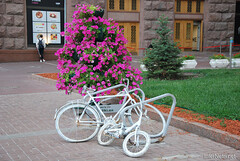 Київ, Хрещатик Ukraine InterNetri 072