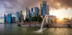Sunset scene of The Merlion is a traditional creature with a lion head and a body of a fish, seen as a symbol of Singapore city at the marina bay in Singapore. (MongkolChuewong) Tags: aerial architecture asia asian attraction bay building business city cityscape cloud culture day district evening exterior famous fountain garden hotel landmark landscape light lion marina market merlion modern morning night park river sand sea singapore sky skyline statue sunrise sunset symbol tourism tourist tower travel twilight urban view water waterfront