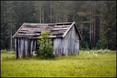 Midsommarnatt (Jonas Thomén) Tags: midsommar midsummer field åker lada barn haybarn hölada grass gräs skog forest woods trees träd dimma fog mist natt night