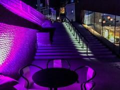 's-Hertogenbosch,  Bolwerk Sint Jan. (Rudike) Tags: purplelight paarslicht thecolorpurple 'shertogenbosch denbosch