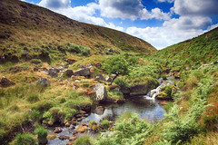 Steeperton gorge (OutdoorMonkey) Tags: dartmoor devon stream river steeperton countryside outside outdoor rural nature natural scenic scenery moor moorland remote wild wilderness