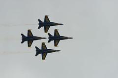 Dimond (Josh152) Tags: navy airshow fa18hornet nikon d800 fa18 chippewavalleyairshow blueangels figher plane usn nikond800 cvas18