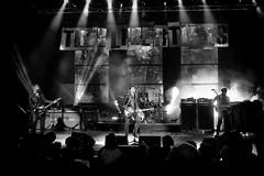 The Libertines (aurélien.) Tags: powershotg7x thelibertines libertines meltdown meltdown2018 carlbarât peterdoherty petedoherty johnhassall garypowell canonpowershotg7x music concert live livemusic gig