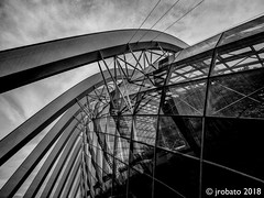Intertwined (orgazmo) Tags: blackwhite monochrome singapore gardensbythebay flowerdome architectural abstract geometric geometry olympus omd em1mk2 leicadgvarioelmarit818mmf284asph panasonic leica micro43s m43s buildings structures