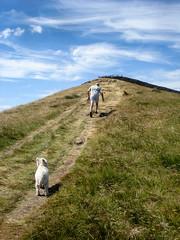 The Final Push (Mabvith) Tags: yorkshire england uk sharphaw skipton hill summit mountain peak walker dog path climb