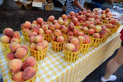 peaches (Just Back) Tags: peach fruit skin exocarp mesocarp endocarp pit drupe rosaceae commerce vitamins water sweet fuzz but sell market sodacity columbia sc summer
