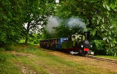 Borsig Bn2t-2 11458 (Radosław Matysek) Tags: borsig bn2t2 11458 narrow gauge steam wyrzyska kolej powiatowa białośliwie kocik młyn poland