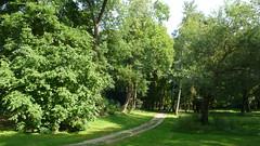 Encore une promenade à Oissel (jeanlouisallix) Tags: rouen oissel seine maritime haute normandie france paysage landscape nature panorama parc jardin garden arbres