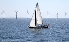 ... Off to Sea - free and easy ... (ChristianofDenmark) Tags: christianofdenmark copenhagen denmark spring hot heatwave windmills sunshine