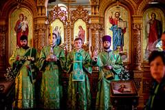 2018.05.28 liturgiya v den' Svyatogo dukha v Brovarakh (5)