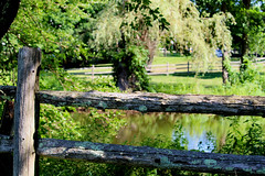 Another view of the pond (Stans Gallery) Tags: fence railfence wood reflections wetreflections trees water waterscape summer sunlight shadows rustic rural pastoral canonrebel landscape pond grass
