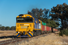 Trees near Tomingley West (Henry's Railway Gallery) Tags: 8206 82class emd diesel clyde pn pacificnational oretrain freighttrain tomingleywest 8428n 8428