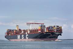 MSC LEANNE (angelo vlassenrood) Tags: ship vessel nederland netherlands photo shoot shot photoshot picture westerschelde boot schip canon angelo walsoorden cargo container mscleanne