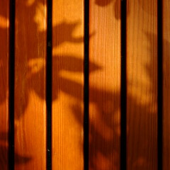 shadowy (vertblu) Tags: woodenbench wood wooden woodenboards orange shadows verticals lines linien abstractfeel almostabstract minimal minimalism minimalismus woodgrain grain vein plankwise bsquare 500x500 kwadrat vertblu graphical graphic monochrome texture textur