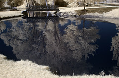 Infrared Reflections (arbyreed) Tags: arbyreed infrared falsecolorinfrared 665nanometerinfrared water reflections blue bridge infraredconvertedcanon20d